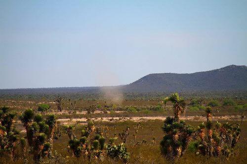 Священная пустыня Вирикута